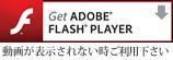 Adobe Reader�̃_�E�����[�h